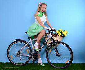 Обои Hayley Marie Coppin Стены Велосипеды Улыбка Блондинки Сидящие Корзинка Девушки