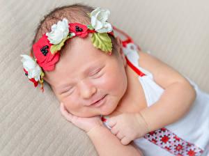 Фото Младенец Сон Венок Лицо ребёнок