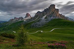 Фотография Италия Гора Луга Альп Dolomites Природа
