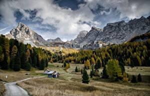 Картинки Горы Осенние Дороги Лес Италия Пейзаж Val Di Fassa, Dolomites Природа