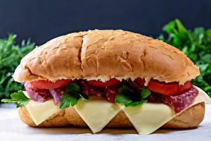 Фотографии Сэндвич Булочки Сыры Колбаса Еда