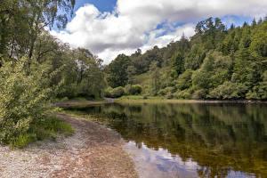 Фотографии Шотландия Озеро Лес Побережье Lakes near Ben A'an Природа