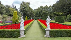 Обои Скульптура Парк Англия Кусты Дизайн Cliveden Garden Природа