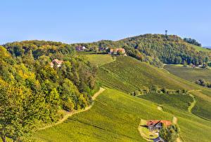Картинка Словения Поля Леса Дома Холмов Природа