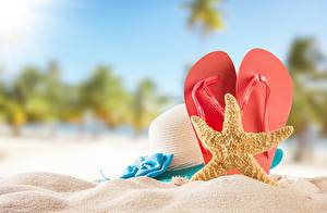 Обои Морские звезды Лето Вьетнамки Песок Шляпы
