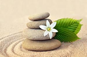 Обои Камни Вблизи Песок zen