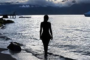 Фотография Рассвет и закат Берег Море Силуэта Вид сзади Девушки