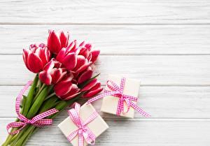 Картинки Тюльпаны Букеты Подарков Доски цветок