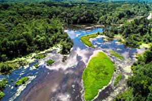 Фотографии Штаты Леса Берег Сверху Kost Minnesota Природа