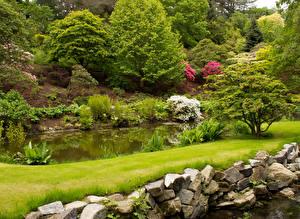 Фотография Великобритания Сады Пруд Камень Кустов Bodnant Garden