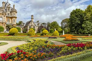 Фото Великобритания Сады Газон Дизайна Кусты Waddesdon Manor gardens Природа