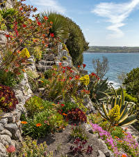 Картинки Великобритания Скале Залив St Michael's Mount Природа