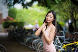 Фотографии Азиатки Боке Рука Миленькие Брюнетки Платья девушка