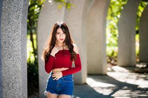 Фотографии Азиатка Размытый фон Поза Шортах Взгляд Шатенки молодые женщины