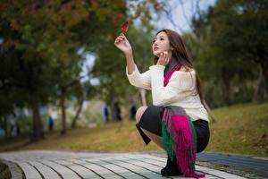 Картинка Азиатки Боке Позирует Сидящие Миленькие Шатенки девушка
