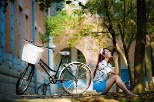 Обои Азиаты Сидящие Позирует Боке Велосипеде Корзинка молодые женщины