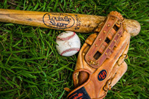 Фото Бейсбольная бита Траве Мяч Перчатки Спорт