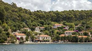 Фото Хорватия Берег Здания Лес Mljet Island город