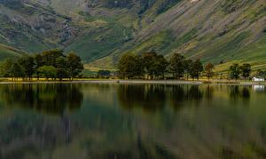 Обои Англия Реки Холмов Деревья Buttermere Allerdale District Природа