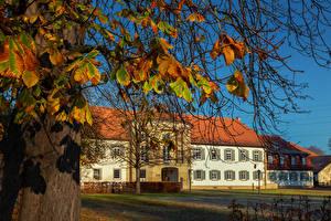 Фотография Германия Осенние Дворец Ветка Monrepos Palace Города
