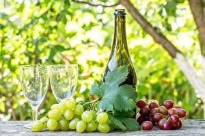 Фотография Виноград Вино Бутылки Бокал Продукты питания