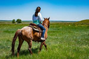 Фото Лошадь Трава Сидящие Идет животное Девушки