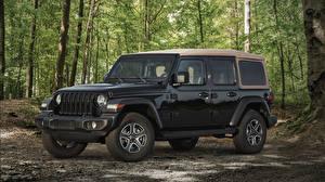 Обои Jeep Внедорожник Черный 2020 Wrangler Unlimited Black and Tan Автомобили