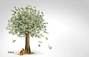 Фотографии Деньги Купюры Доллары Дерево Серый фон