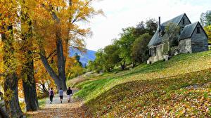 Фото Новая Зеландия Осень Дома Трава Деревьев Листва Идет Lake Hayes Walkway, Central Otago Природа