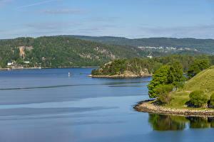 Картинки Норвегия Лес Залив Холмы Oslo Fjord Природа