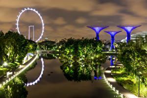 Обои для рабочего стола Сингапур Парк Вечер Дизайна Залива Дерево Gardens by the Bay Природа
