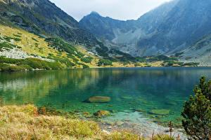 Обои Словакия Гора Озеро High Tatras Природа