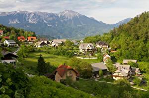 Картинки Словения Здания Гора Лес город