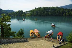 Фото Словения Озеро Причалы Лодки Лестницы Bled Island Природа