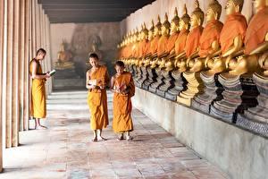 Картинка Храмы Будды Мальчишки Лысый Монах Дети