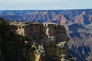 Обои Штаты Гранд-Каньон парк Каньон Путешественник Скале Arizona Природа
