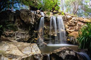 Картинки США Водопады Калифорния Лос-Анджелес Скалы Waterfall Los Angeles Zoo Природа