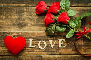 Фотография День святого Валентина Розы Любовь Сердечко Слова Английский цветок