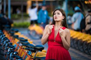 Фото Азиатки Боке Поза Платье Вырез на платье Красных Девушки