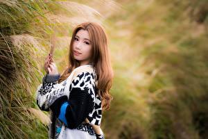 Обои Азиаты Боке Поза Взгляд Милые Шатенки молодые женщины