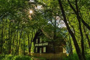 Фотографии Австрия Здания Деревьев Лучи света Ограда Carinthia Природа Города