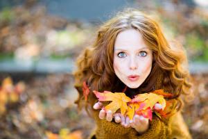 Фото Осенние Шатенка Взгляд Листья Рука Лицо Девушки