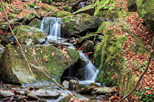 Картинки Осенние Камень Листва Мха Ручеек Природа