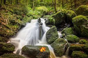 Фотографии Осень Камень Ручеек Мха Природа