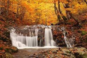 Обои Осенние Камни Водопады Леса Лист Природа
