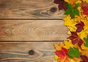 Фото Осенние Доски Листва Шаблон поздравительной открытки