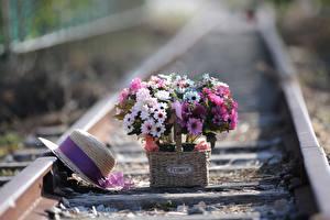 Обои Букет Железные дороги Рельсы Шляпы Корзинка цветок
