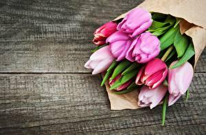 Фотографии Букет Тюльпан Доски цветок