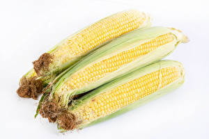 Фото Кукуруза Вблизи Белый фон Пища