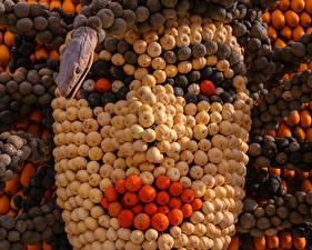 Фотографии Креатив Тыква Много Лицо Дизайн Продукты питания